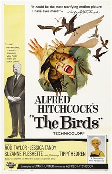 Птицы (The Birds), Альфред Хичкок - фото 4259