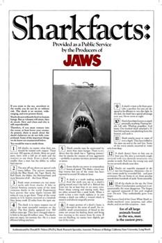 Челюсти (Jaws), Стивен Спилберг - фото 5175