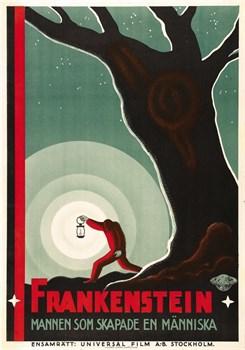 Франкенштейн (Frankenstein), Джеймс Уэйл - фото 5413