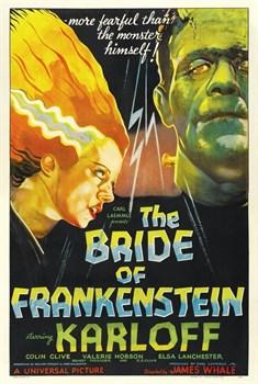 Невеста Франкенштейна (Bride of Frankenstein), Джеймс Уэйл - фото 5414