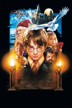 Гарри Поттер и философский камень (Harry Potter and the Sorcerer's Stone), Крис Коламбус - фото 7587
