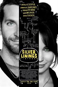 Мой парень – псих (Silver Linings Playbook), Дэвид О. Расселл