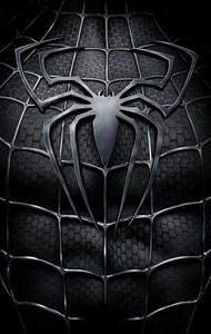 Человек-паук 3: Враг в отражении (Spider-Man 3), Сэм Рэйми